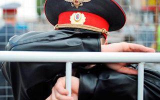 Ответственность за избиение полицейского